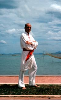 efficacité kung fu