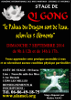 affiche stage QiGong